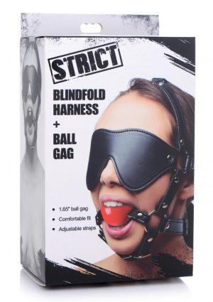 Blindfold Harness w/ Ball Gag